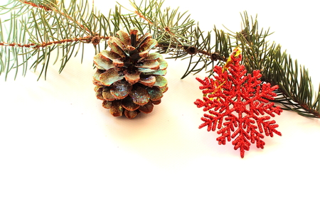 decoration objects: on a white background Christmas star and pine cone