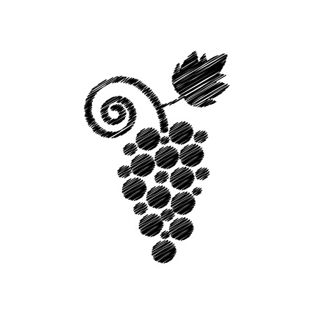 black grape: abstract black grape scribble sign. concept of winery, sommelier, drawing, viticulture, organic, raisin. isolated on white background. sketch style trend modern design illustration