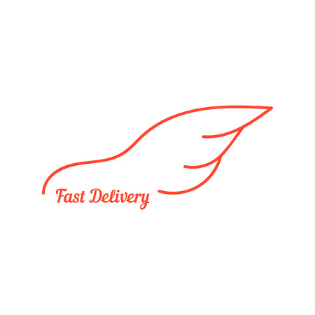 fast delivery with wing like car