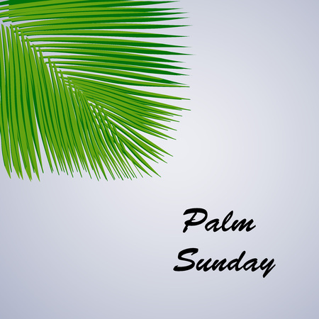 Illustration of Palm Leaves for Palm Sunday