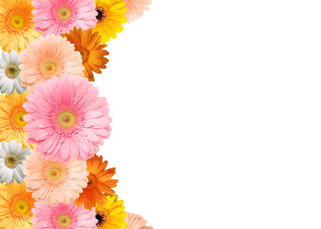 colorful frame: Colorful flower frame Stock Photo
