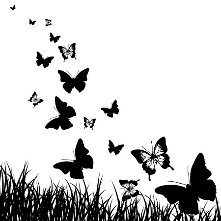 graphic arts: Black silhouettes of butterflies and grass on a white background