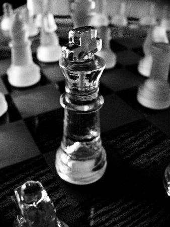 The King of Chess Reklamní fotografie - 868755