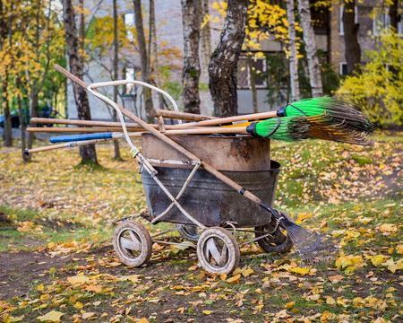old Wheelbarrow and rake for harvesting fallen leaves