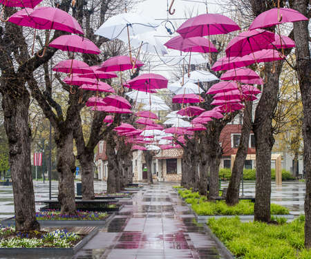 Ogre city central Brivibas Street is decorated with red and white umbrellas. Ogre. Latvia. May 2, 2020. Redakční