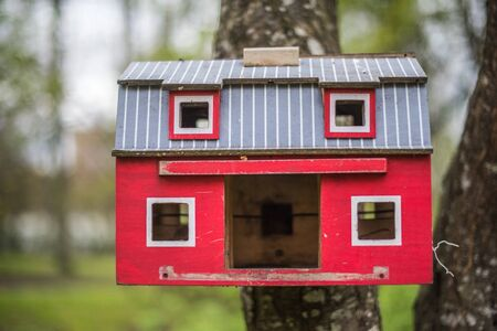 The red birdhouse on a tree in spring forest background Reklamní fotografie