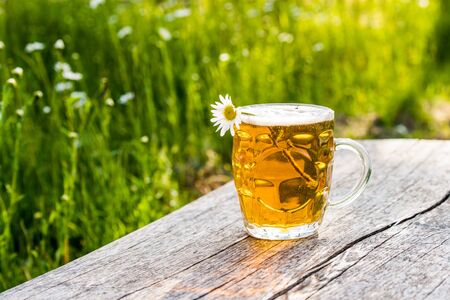 Glass of light beer and chamomile on nature