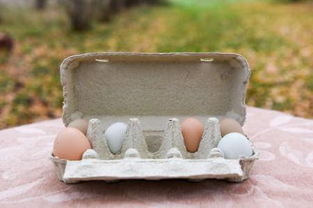 carton egg box outside on Easter for design