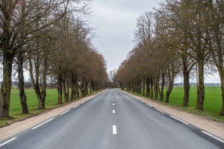 Asphalt wavy road in autumn misty countryside landscape Archivio Fotografico