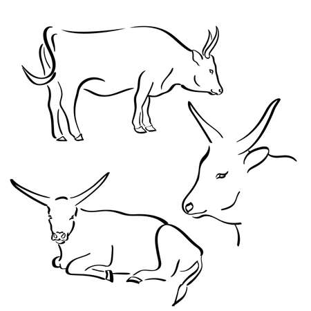 Cow drawn in flat line style. Farm animal. Vector 版權商用圖片 - 159432012
