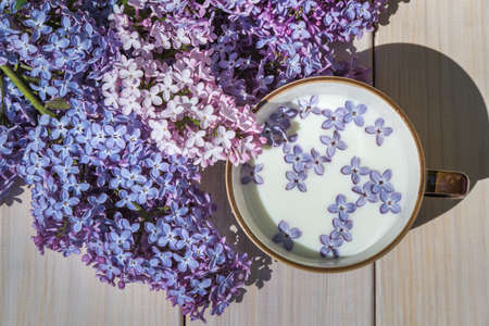 Cup with milk and small purple lilac flowers 版權商用圖片