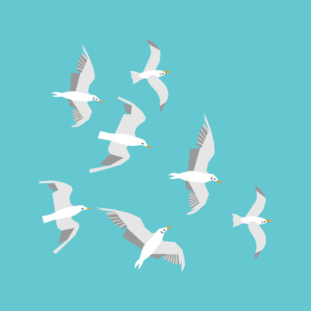 Vector set flying seagulls. Seagulls isolated on a light blue background. Editable flat illustration. Top view. Trendy concept for infographics, catalogs, information and travel guides on marine theme Illustration
