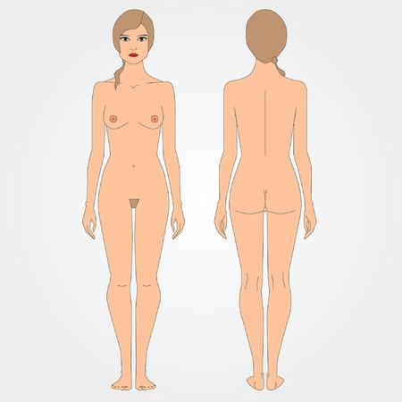 corps femme nue: Dessins de femme nue, figure avant et arrière, design plat. Projet images du corps féminin