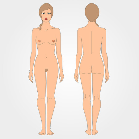 female breast: Drawings of nude woman, figure front and back, flat design. Draft images of the female body Illustration