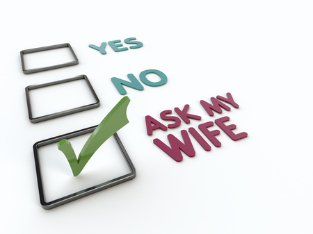 Closeup view of a humorous checklist with yes, no and ask my wife items with green checkmark on a white background