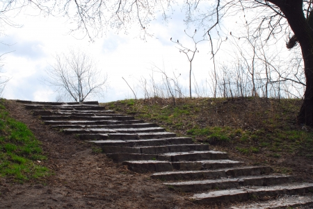 muddy: Muddy stone steps in park