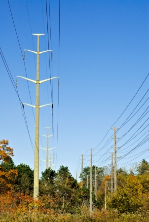 electric current: Two lines of electrical towers passing through autumn forest