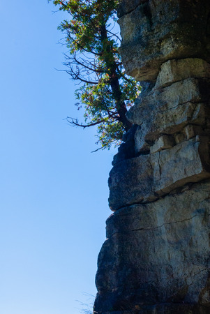 cliff face: Vertical rock cliff face with single tree against empty blue sky. Stock Photo