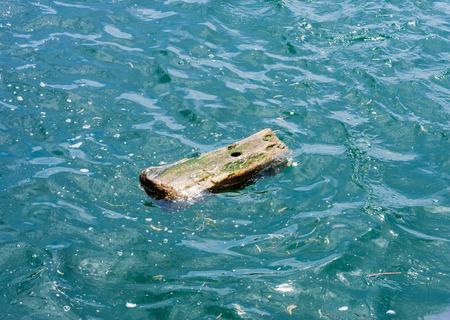 1 つの小さなウェット穴、他の残骸の中で波状の緑色の水に漂う木片です。