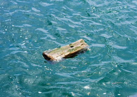 Single small wet piece of wood with hole, drifting in wavy green water among other debris.