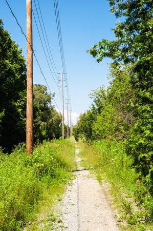 土の道は森の木のアークランプ棒と青空に線の行に沿って、透視で後退します。