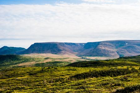 緑の丘は高原台地、グロスモーン国立公園、ニューファンドランド、カナダ付近の曇り空の下での距離での乾燥につながる植生で覆われて。