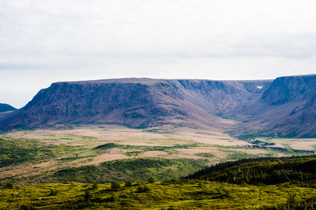 Large dry mountain plateau and valley with trees and green vegetation in foreground, under cloudy sky, near Tablelands, Gros Morne National Park, Newfoundland, Canada.