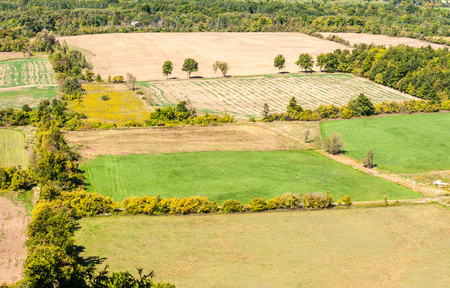 Empty farm fields in early autumn bordered by trees and shrubs, viewed from above, in rural Ontario, Canada.