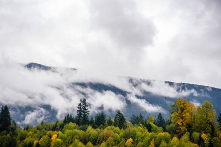 Fog and clouds covering forest  and mountains in British Columbia, Canada.