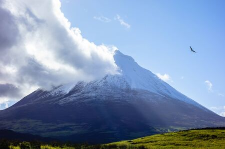 Mount Pico volcano under blue sky with cloud coming off summit and bird nearby, in Azores, Portugal.