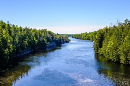 Trent River among dense trees under clear blue sky in summer, in Campbellford, Ontario, Canada.