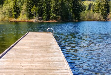 Empty wooden dock with metal ladder on water near trees.