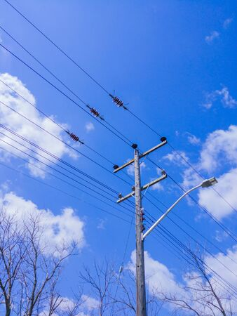 Wooden electrical transmission pole with streetlight and power lines above tree branches against sky and clouds.