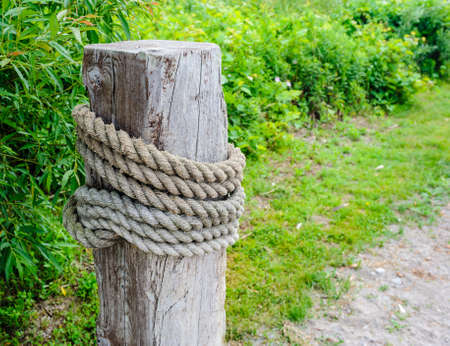 Large wooden post with thick rope wrapped around, near green vegetation. Фото со стока