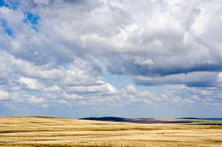 Prairie landscape with wind generators in distance under low clouds, in Alberta, Canada.