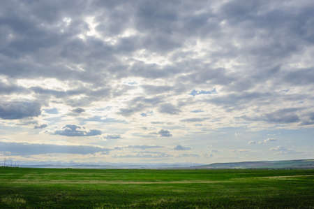 Prairie landscape with mountains in distance under low clouds, in Alberta, Canada. Фото со стока