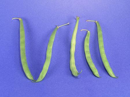 roman beans: Vege-Number 8 (Roman)