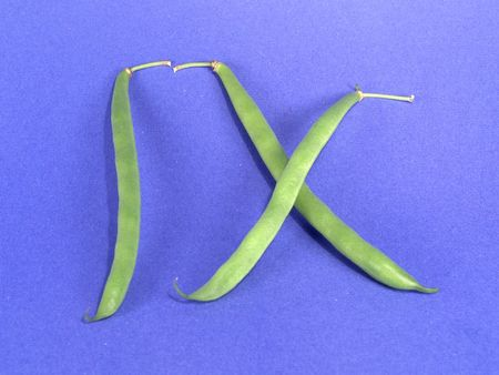 Vege-Number 9 (Roman)