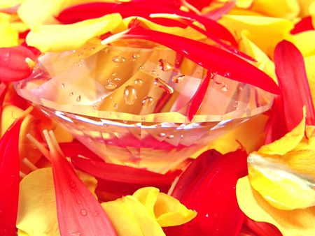 Diamond and Flower Petals (Rose and Gerbera Daisy) photo