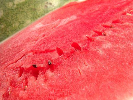 carotenoid: Jugosa sand�a sin semillas frescas vista de cerca