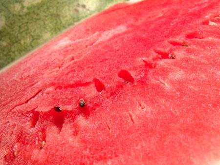 seedless: Juicy seedless watermelon fresh close up view