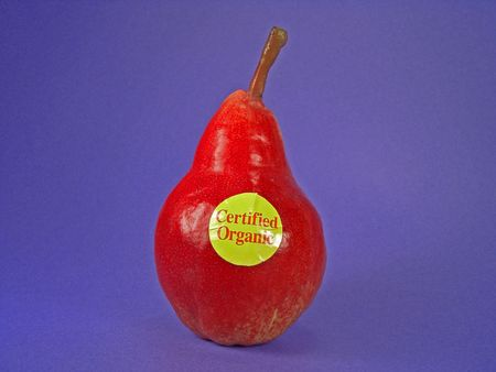 food inspection: A red European certified organic pear