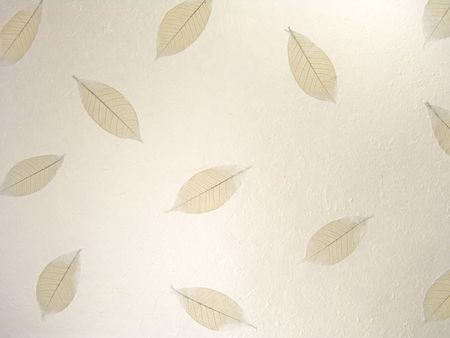 lacey: Skeletal Leaves on a rough hand made cotton paper