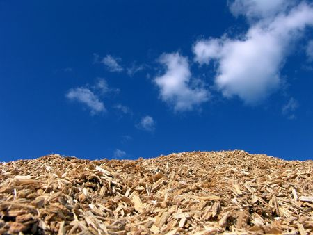 bark mulch: Mulch Wood Pieces And Blue Sky Background