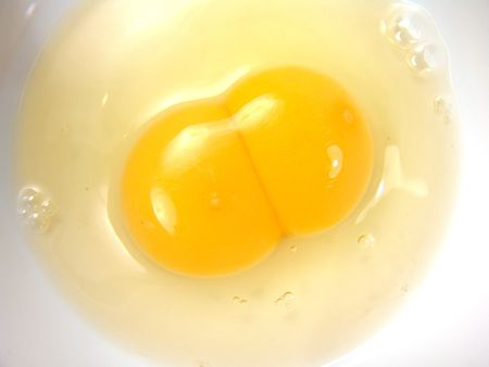 Identical Twins Egg White Yolk Close Up