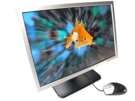 Environmental Friendly Green Technology - A pair of goldfishes coming out from a Wide Screen Computer Monitor (Isolated on white background)                   photo