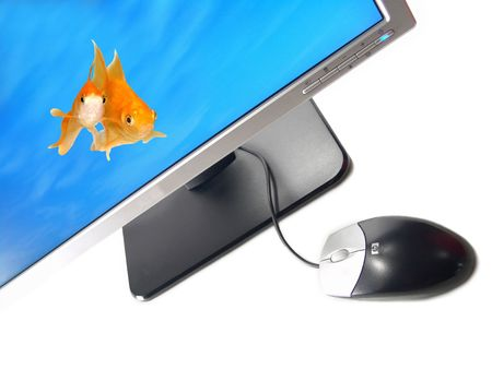 Environmental Friendly Green Technology - A pair of goldfishes coming out from a Wide Screen Computer Monitor (Isolated on white background)