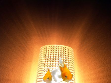 Eco-friendly Energy Environmental Protection Goldfishes Swimming photo