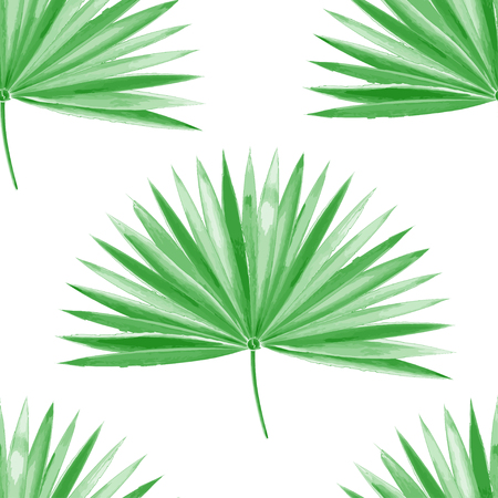 Watercolor palm leaf green vector Illustration