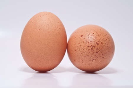 Two eggs isolated on a white background Stock Photo - 8494380